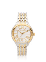 AIGNER Men A108103 Alassio Stainless Silver Gold
