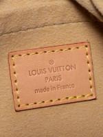 LOUIS VUITTON Monogram Etoile City PM